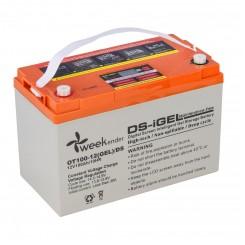 Аккумулятор гелевый Weekender 12 В 100 Ач с дисплеем (12V100AH DS)