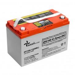 Аккумулятор гелевый Weekender 12 В 100 Ач с дисплеем (12V100AH DS-LVD)